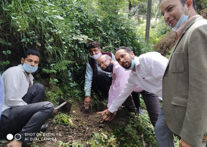 Tree Plantation in UCBS on 25th August 2020